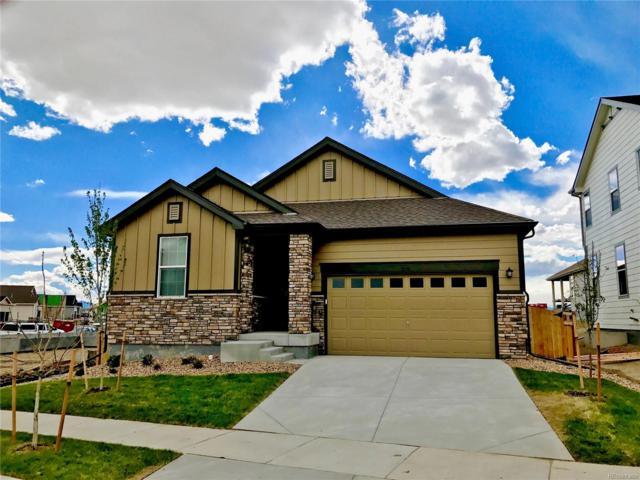 3539 Raintree Lane, Dacono, CO 80514 (MLS #3632103) :: 8z Real Estate