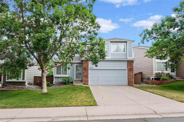 9724 Whitecliff Place, Highlands Ranch, CO 80129 (#3634696) :: The HomeSmiths Team - Keller Williams