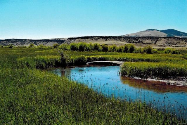 County Road Cc 36, Saguache, CO 81149 (MLS #3638273) :: 8z Real Estate