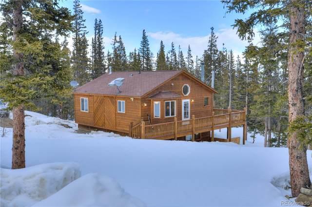 238 Prunes Place, Fairplay, CO 80440 (#3639246) :: Briggs American Properties