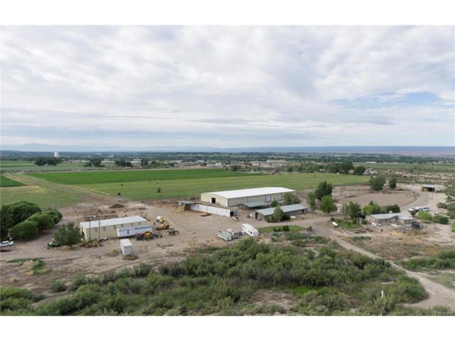 840 1400 Lane, Delta, CO 81416 (MLS #3640027) :: 8z Real Estate