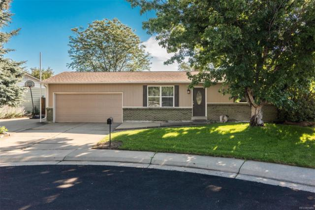 1552 S Pierson Court, Lakewood, CO 80232 (#3642789) :: HomePopper