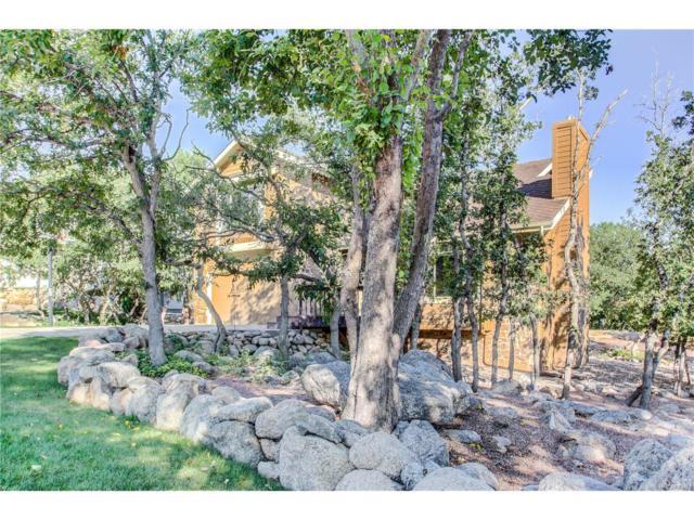 580 Brandywine Drive, Colorado Springs, CO 80906 (MLS #3643532) :: 8z Real Estate