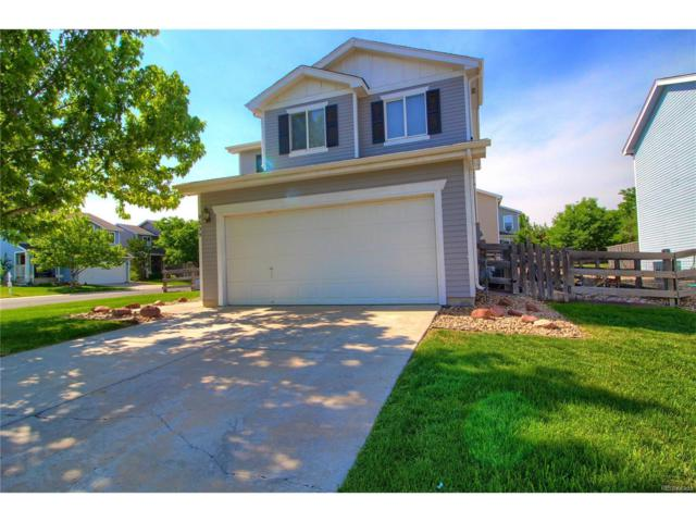 9539 Elk Mountain Circle, Littleton, CO 80125 (#3644369) :: The Peak Properties Group