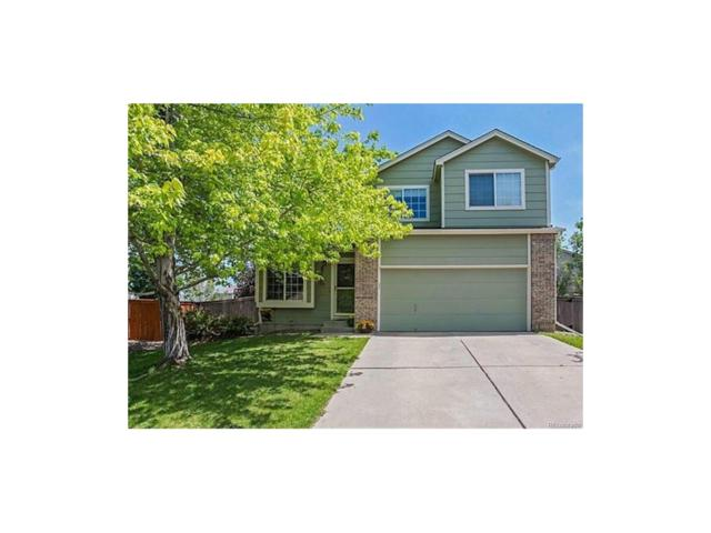 10090 Tarcoola Place, Highlands Ranch, CO 80130 (#3645951) :: The Sold By Simmons Team