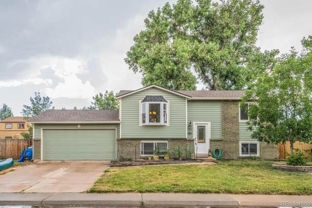11823 Steele Street, Thornton, CO 80233 (#3650361) :: Peak Properties Group