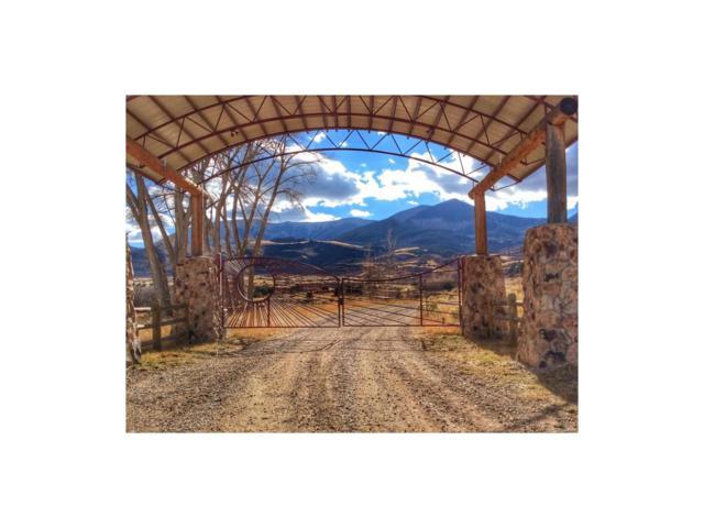 Lot 10 Yellowstone Creek Ranch, La Veta, CO 81055 (MLS #3651709) :: 8z Real Estate
