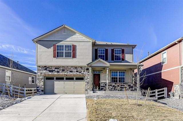 6060 Point Rider Circle, Castle Rock, CO 80104 (#3651874) :: House Hunters Colorado