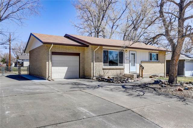 3166 S Osceola Street, Denver, CO 80236 (#3653106) :: Berkshire Hathaway HomeServices Innovative Real Estate