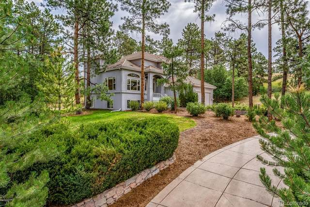 432 Winton Place, Castle Rock, CO 80108 (#3653729) :: Peak Properties Group