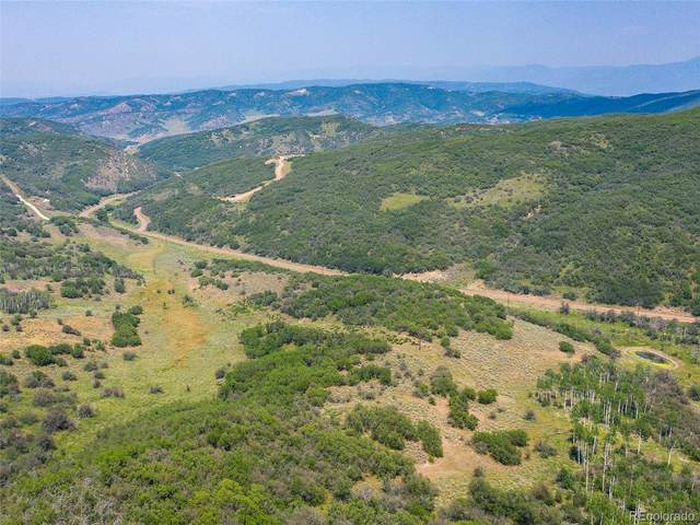 30025 County Road 179, Oak Creek, CO 80467 (#3654492) :: The Artisan Group at Keller Williams Premier Realty