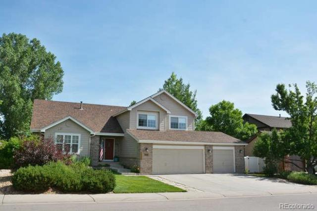 10008 Astoria Court, Lone Tree, CO 80124 (#3655252) :: The Peak Properties Group