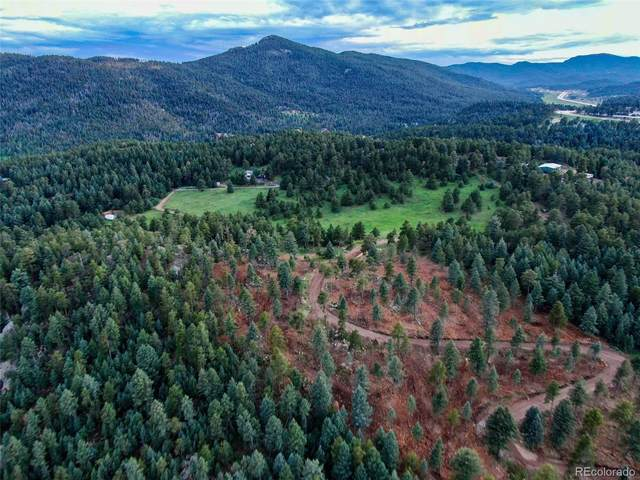 9256 Broken Bow Ranch Road, Morrison, CO 80465 (MLS #3655448) :: Bliss Realty Group
