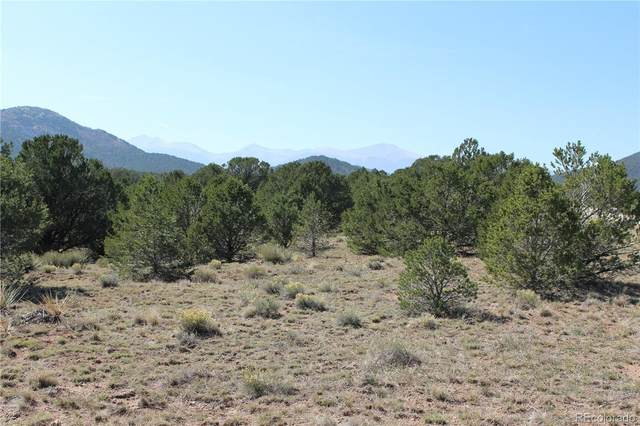 Lot 14 Hitching Post Road, Cotopaxi, CO 81223 (#3658253) :: Portenga Properties - LIV Sotheby's International Realty