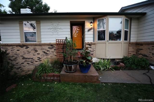 4982 S Yank Street, Morrison, CO 80465 (MLS #3659969) :: Keller Williams Realty