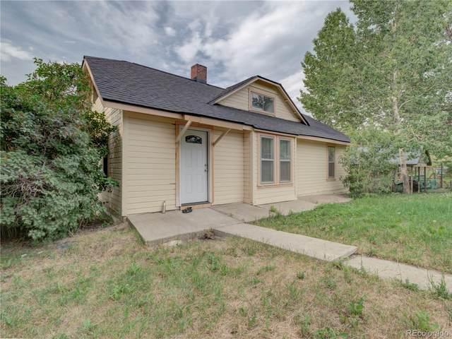 110 W Virgina Street, Oak Creek, CO 80467 (#3662609) :: Finch & Gable Real Estate Co.