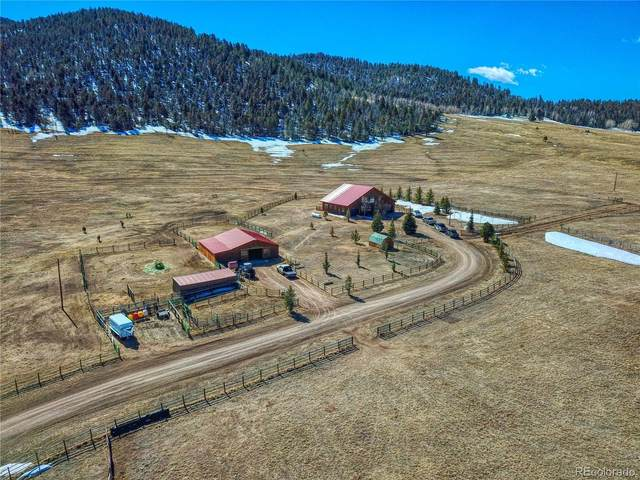 11900 Cr 328, Westcliffe, CO 81252 (#3662793) :: The HomeSmiths Team - Keller Williams