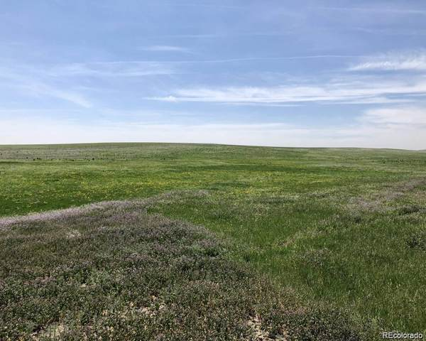 01 County Rd 146, Agate, CO 80101 (MLS #3665373) :: Find Colorado