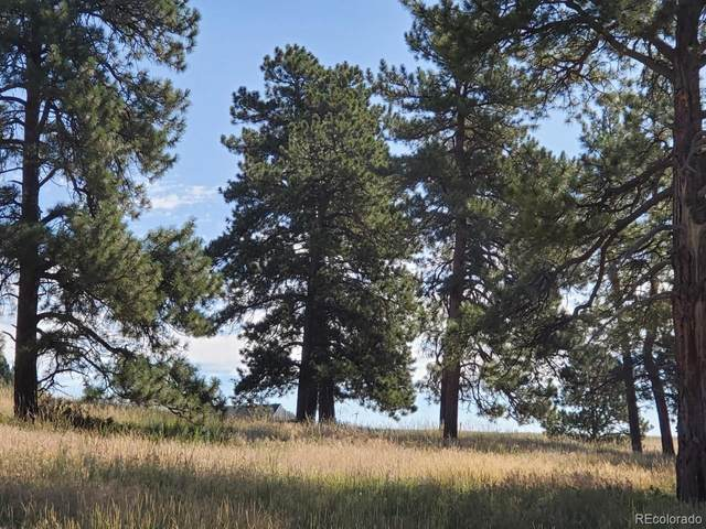 10562 Shadow Pines Road, Parker, CO 80138 (#3665433) :: Kimberly Austin Properties