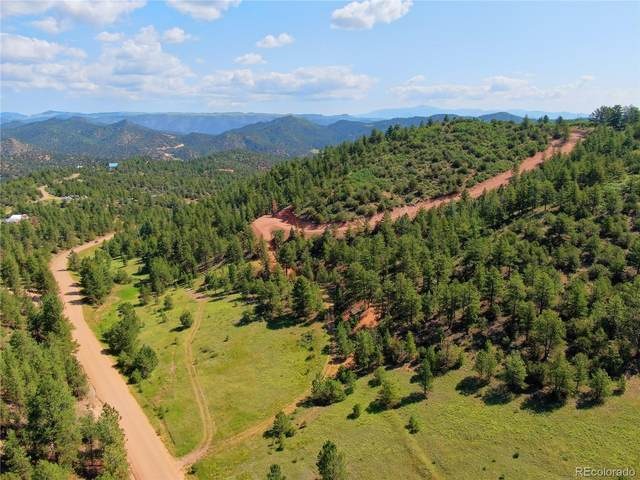 1758 Buttonwood Road, Canon City, CO 81212 (#3666338) :: Own-Sweethome Team