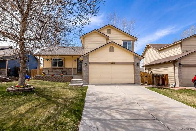 12217 Hudson Court, Thornton, CO 80241 (#3667195) :: HomeSmart