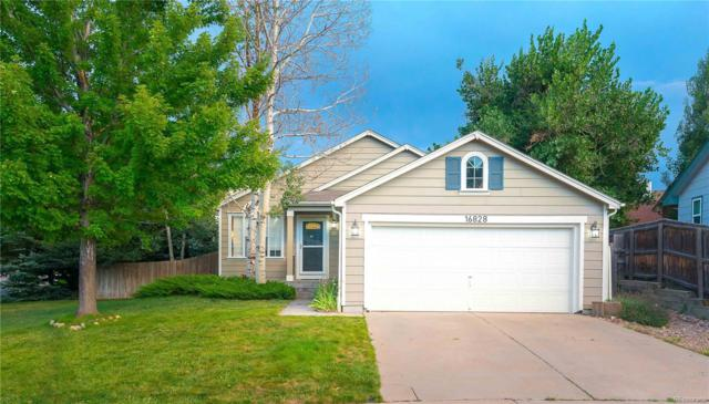 16828 Maple Crest Drive, Parker, CO 80134 (#3668409) :: The HomeSmiths Team - Keller Williams