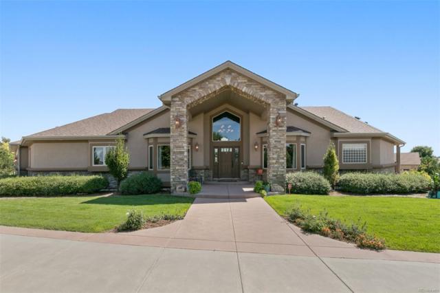 8210 E 128th Place, Thornton, CO 80602 (#3671174) :: Wisdom Real Estate