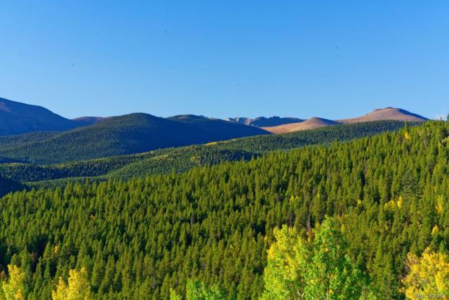 620 Cascade Creek Rd., Idaho Springs, CO 80452 (#3672111) :: 5281 Exclusive Homes Realty