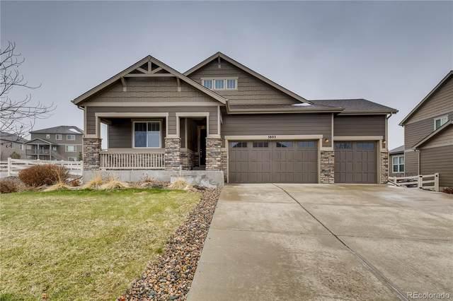 5805 Golden Field Lane, Castle Rock, CO 80104 (MLS #3674236) :: 8z Real Estate