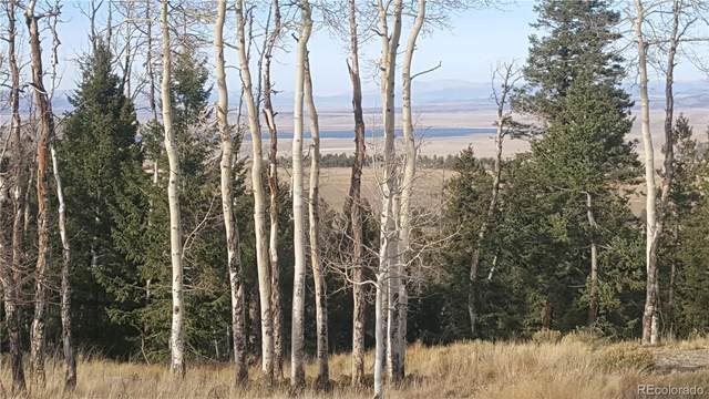 1440 Blacksmith Road, Hartsel, CO 80449 (#3674763) :: Venterra Real Estate LLC
