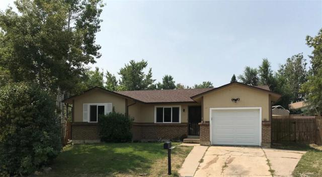 8563 Dover Court, Arvada, CO 80005 (#3675248) :: Sellstate Realty Pros