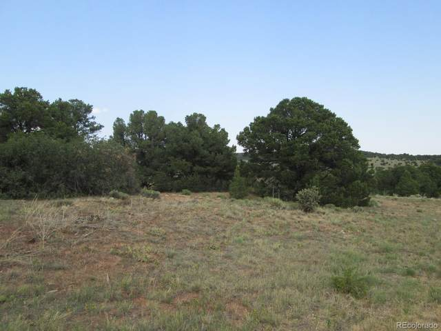 71 Comanche, Walsenburg, CO 81089 (#3675629) :: The HomeSmiths Team - Keller Williams