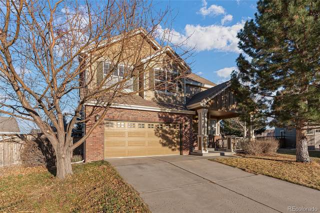 4021 Mesa Meadows Court, Castle Rock, CO 80109 (#3680011) :: The DeGrood Team