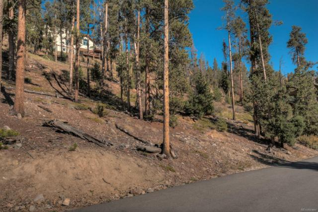 91 Cr 451, Breckenridge, CO 80424 (#3680307) :: Bring Home Denver