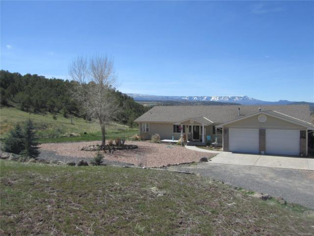 57840 Pe Road, Collbran, CO 81624 (#3680607) :: Group 46:10 - Denver