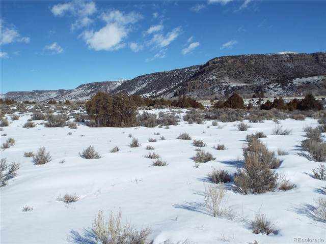 lot 9 Conejos Trail Drive, Antonito, CO 81120 (#3680739) :: The DeGrood Team
