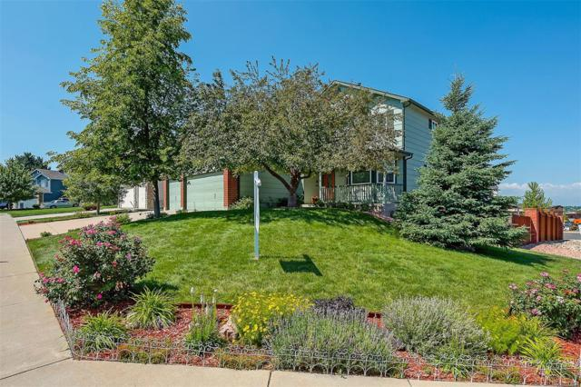 19702 E Stanford Drive, Centennial, CO 80015 (#3680992) :: Structure CO Group