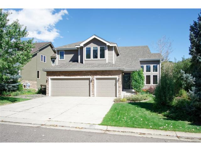 62 Willowleaf Drive, Littleton, CO 80127 (#3684138) :: RE/MAX Professionals