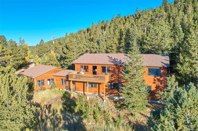 247 Alpine Drive, Nederland, CO 80466 (#3684472) :: The Peak Properties Group