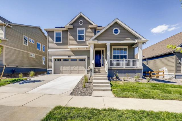 767 Cabot Drive, Erie, CO 80516 (MLS #3684804) :: 8z Real Estate