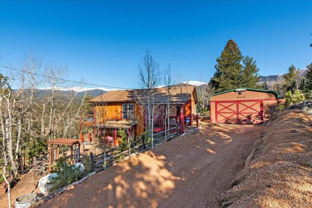 29 Ball Road, Bailey, CO 80421 (MLS #3686575) :: 8z Real Estate