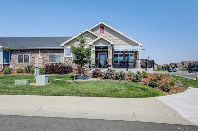 3583 E 124th Place, Thornton, CO 80241 (#3687808) :: Chateaux Realty Group