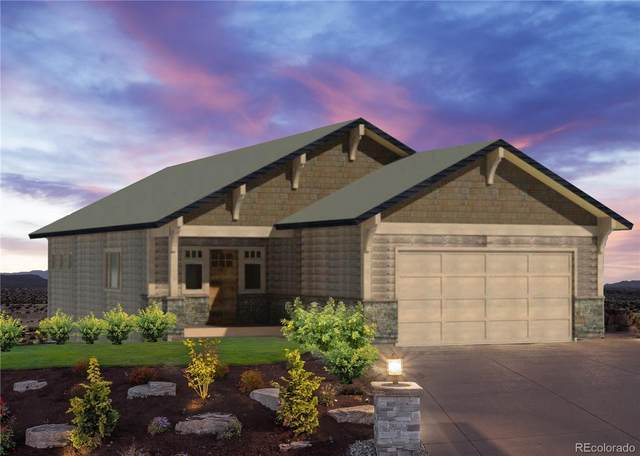 910 Dry Creek South Road, Hayden, CO 81639 (MLS #3687815) :: 8z Real Estate