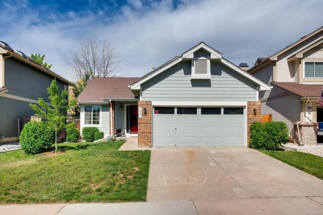 7541 Dusk Street, Littleton, CO 80125 (#3690684) :: The HomeSmiths Team - Keller Williams
