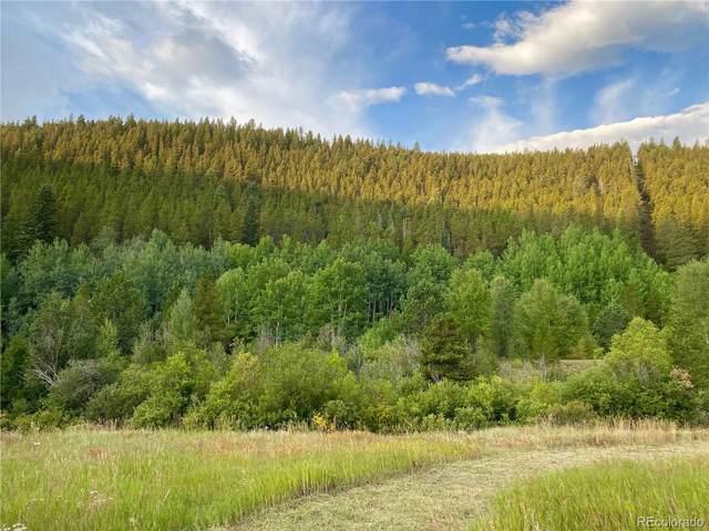 007 Apex Valley Road, Black Hawk, CO 80422 (MLS #3692568) :: Bliss Realty Group