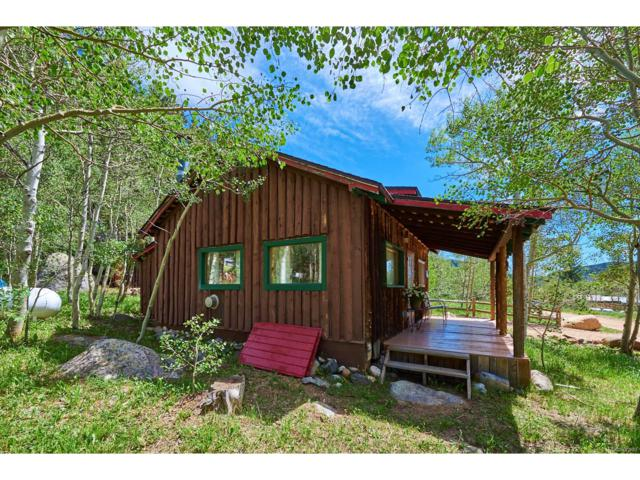 945 Klondyke Avenue, Nederland, CO 80466 (MLS #3693221) :: 8z Real Estate