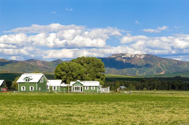 41070 County Road 44, Steamboat Springs, CO 80487 (#3696019) :: The Heyl Group at Keller Williams