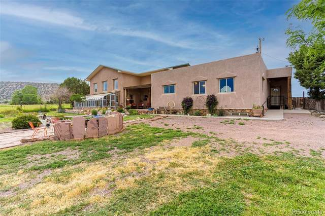 1343 Indiana, Canon City, CO 81212 (#3698236) :: The DeGrood Team