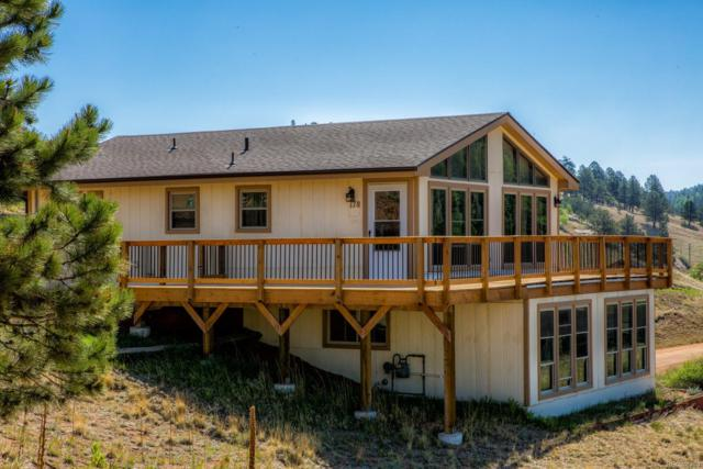 178 Cottonwood Lake Drive, Divide, CO 80814 (#3698546) :: The DeGrood Team