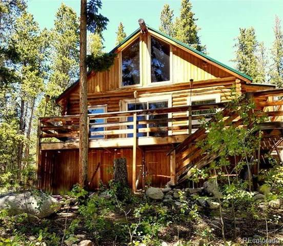 750 County Road 6E, Leadville, CO 80461 (#3705199) :: Bring Home Denver with Keller Williams Downtown Realty LLC